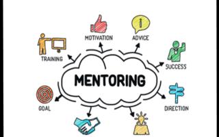 mentoropleiding (e-learning)
